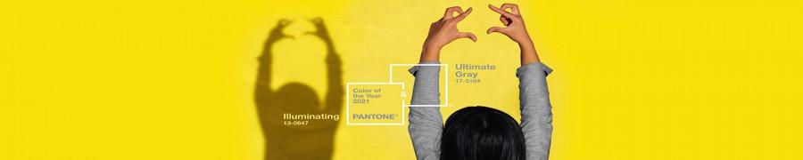 O que é PantoneLIVE?